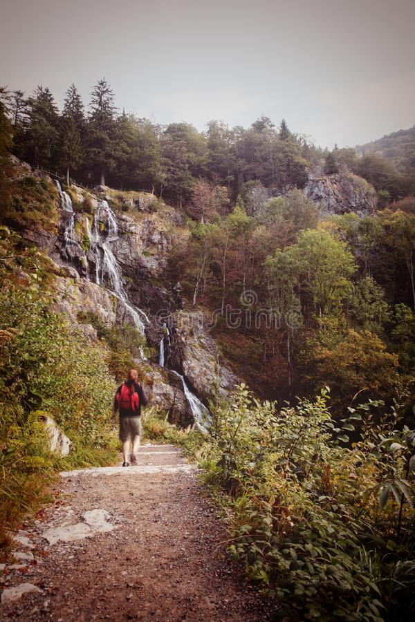 Man hiking to the todtnauer waterfalls, holiday in the black for. Est, Germany stock photography