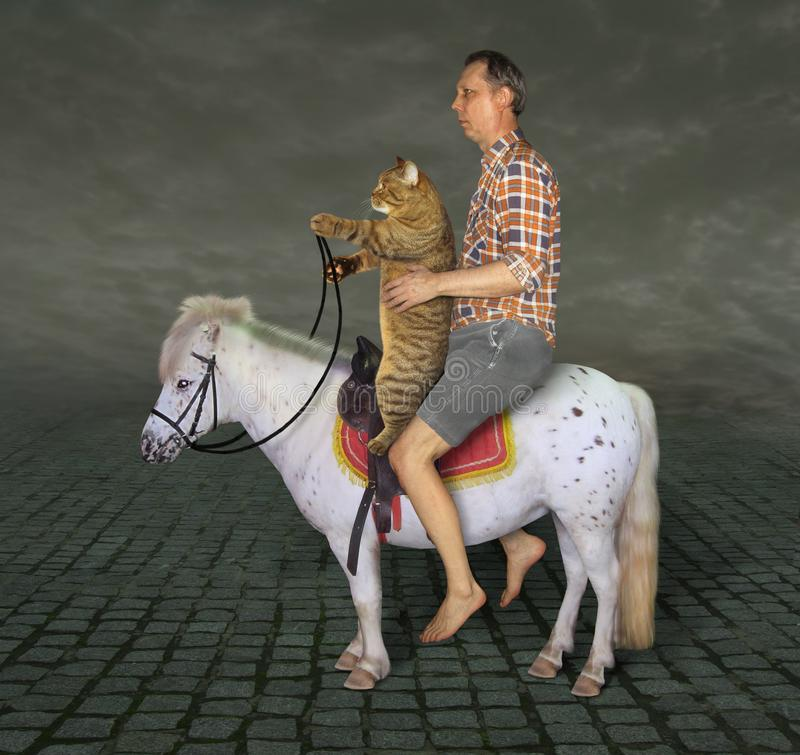 Man and his cat on the pony royalty free stock photos