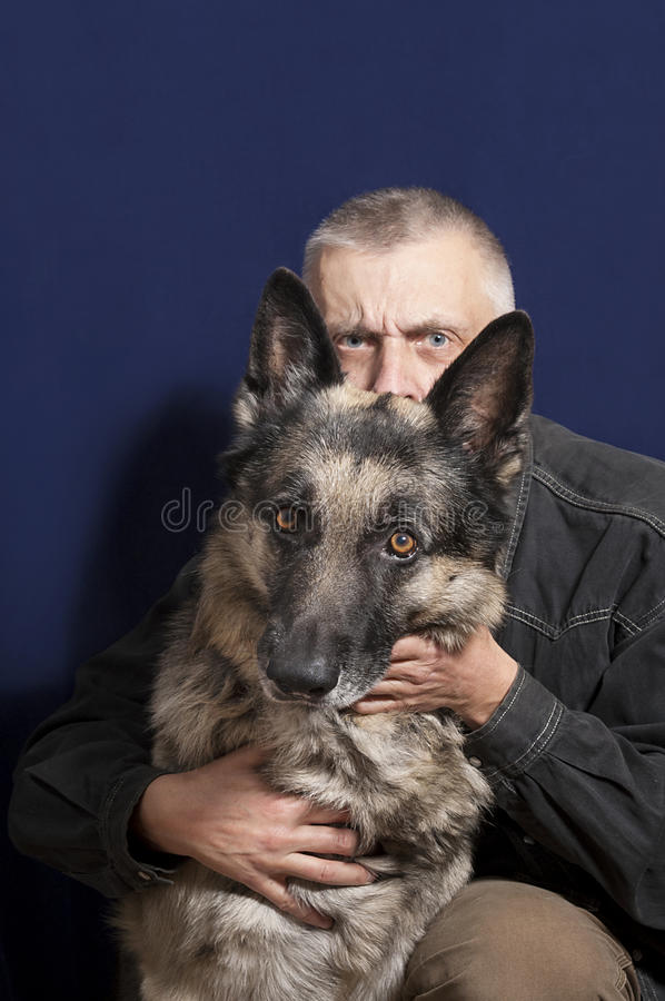 Man and his Dog. Man hiding behind a shepherd dog, safety concept, studio shot on blue royalty free stock photo