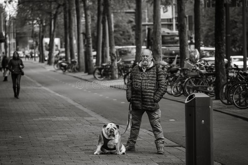 Man and his dog, street portrait, similar posture. Black and white image, candid shot, bulldog royalty free stock photography