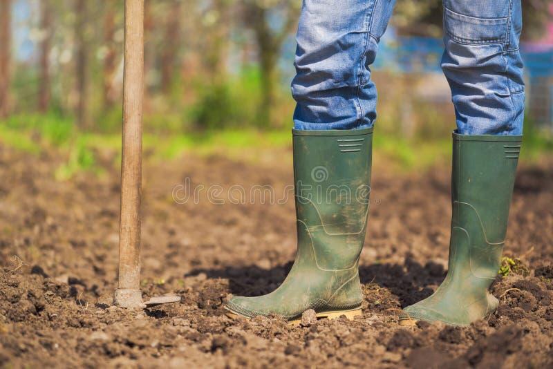 Man hoeing vegetable garden soil. New growth season on organic farm royalty free stock image