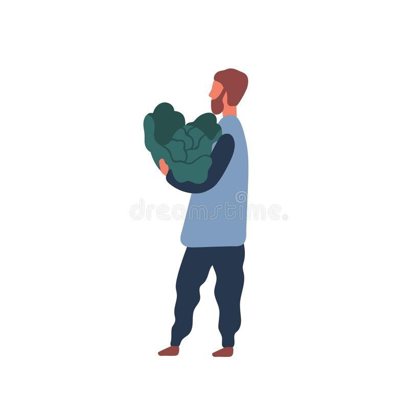 Man holding big cabbage flat vector illustration. Farm worker, vegetarian guy cartoon character. Farmer with natural royalty free illustration