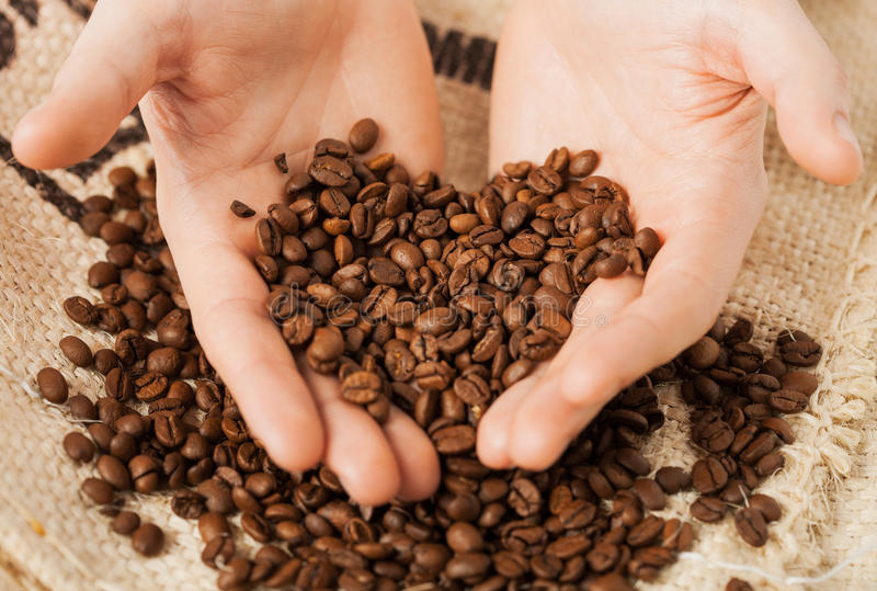 Man holding coffee beans stock photos