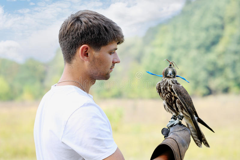 Man holding a falcon. Young handsome man holding a falcon on his arm royalty free stock photos