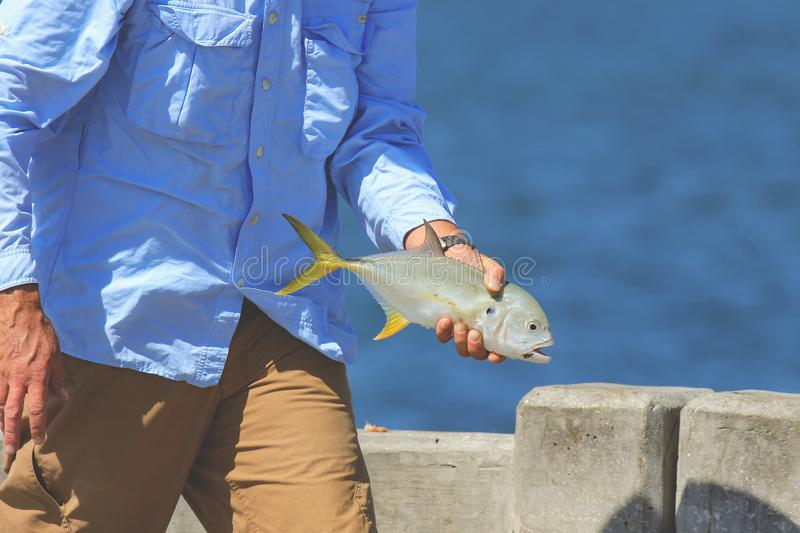 Man holding a fish. royalty free stock image