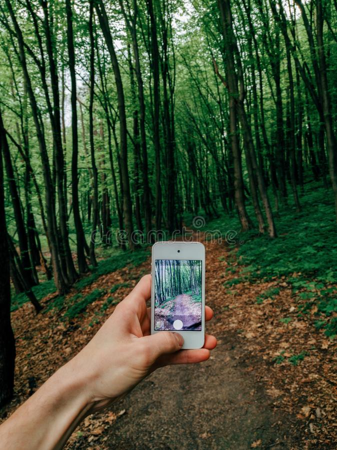 Man holding his smartphone capturing forest trail in spring. Travel photography royalty free stock images