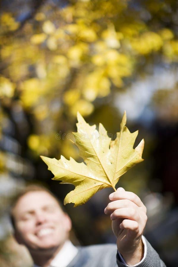 Download Man Holding Leaf stock photo. Image of displaying, single - 7836380