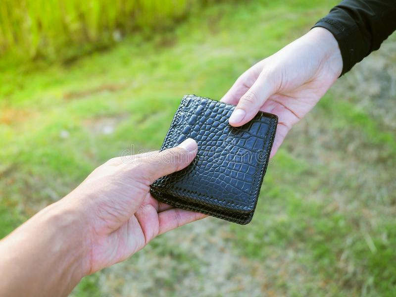Man is holding leather wallet give to woman on green nature back. Ground stock photos