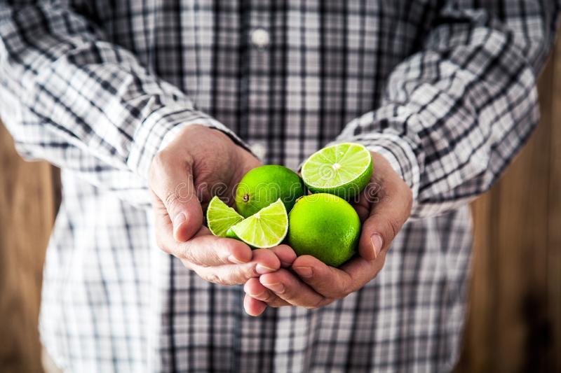Man holding limes. Organic fruit. Farmers hands with fresh fruit. Fresh organic limes. Green lime stock image
