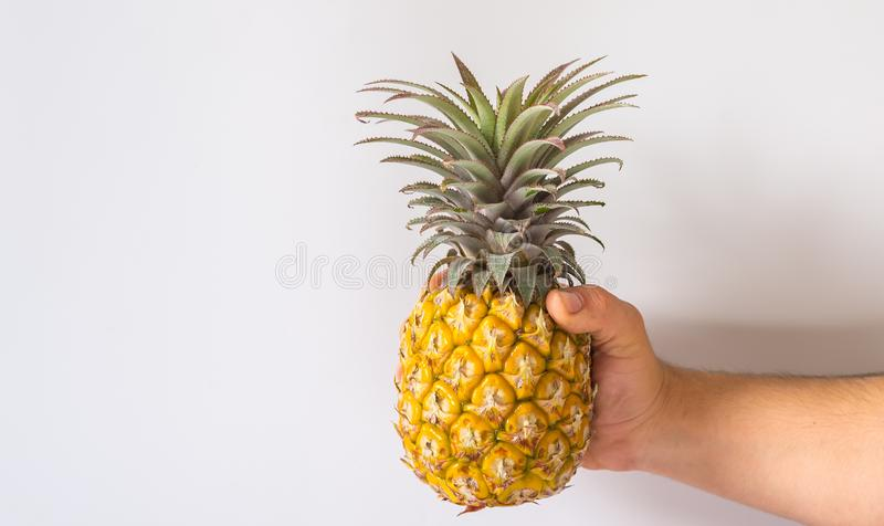 Man holding a pineapple or ananas , white background royalty free stock image
