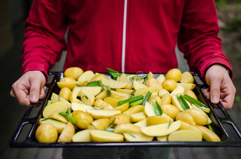 Man holding potatoes. Man holding an oven tray with new potatoes with herbs royalty free stock images