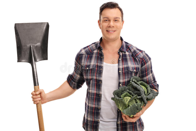 Man holding a Savoy cabbage and a shovel royalty free stock photo