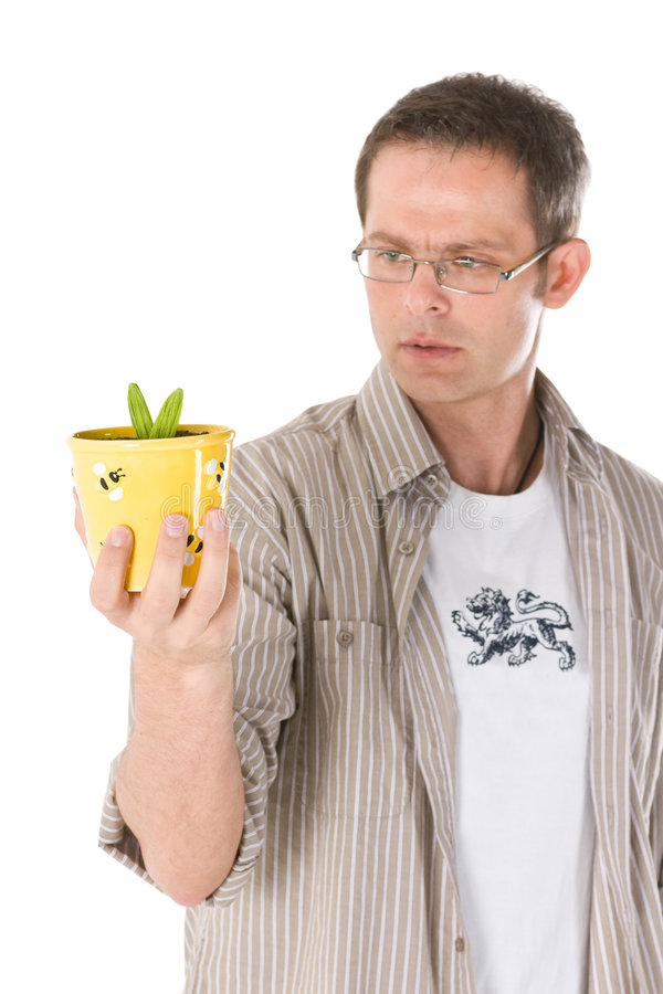 Man holding small plant. A man holding a small plant and looking at it stock photo