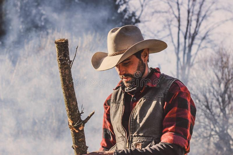 Man Holding Wood Standing royalty free stock photography