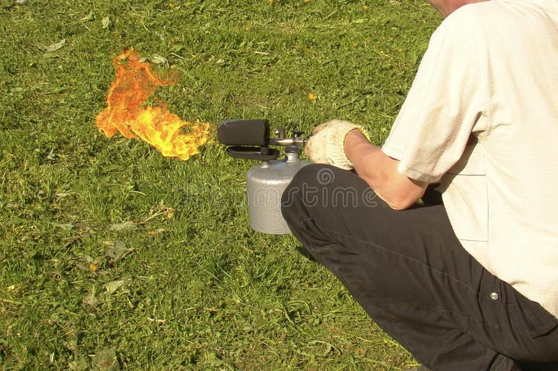 A man holds a burning soldering lamp in his hands. A man holds a burning solo lamp in his hands. bright flame on a background of green grass. copy space stock photo