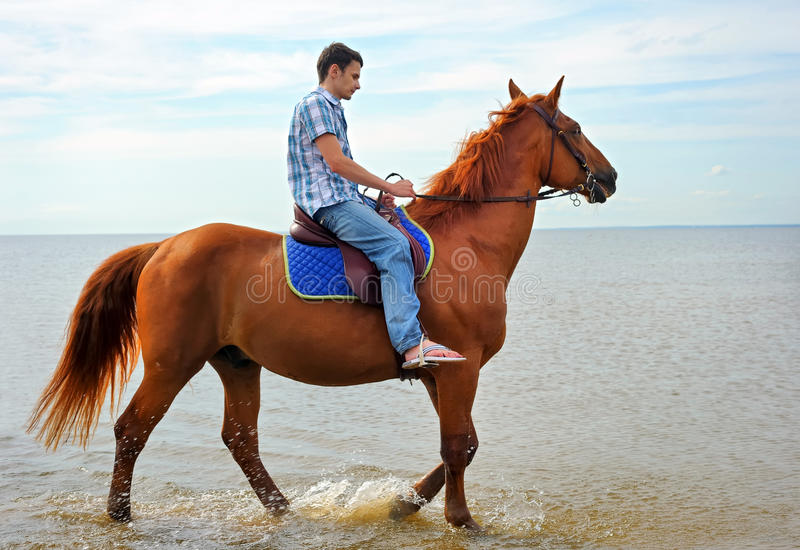 Download Man on horse stock image. Image of rider, journey, nature - 20682533