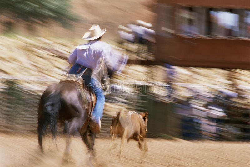 Download Man on horseback editorial stock photo. Image of pastimes - 23161253