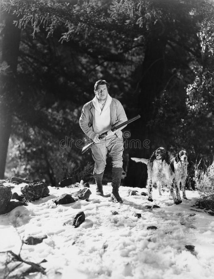 Man hunting in snowy woods with dogs stock photos