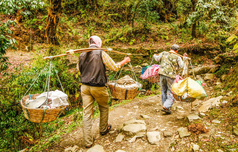 Man i Nepal som bär en stor tung påfyllning på deras skuldror fotografering för bildbyråer