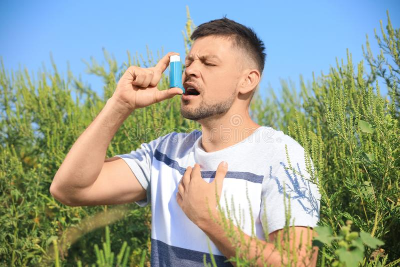 Man with inhaler suffering from ragweed allergy on sunny day royalty free stock photos