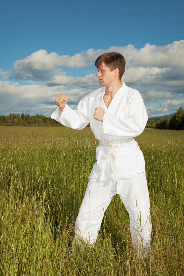 Download Man In Kimono Standing In Grass Stock Photo - Image: 15433076