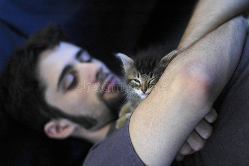 Man and Kitten. A young man and a small blue eyed kitten taking a nap