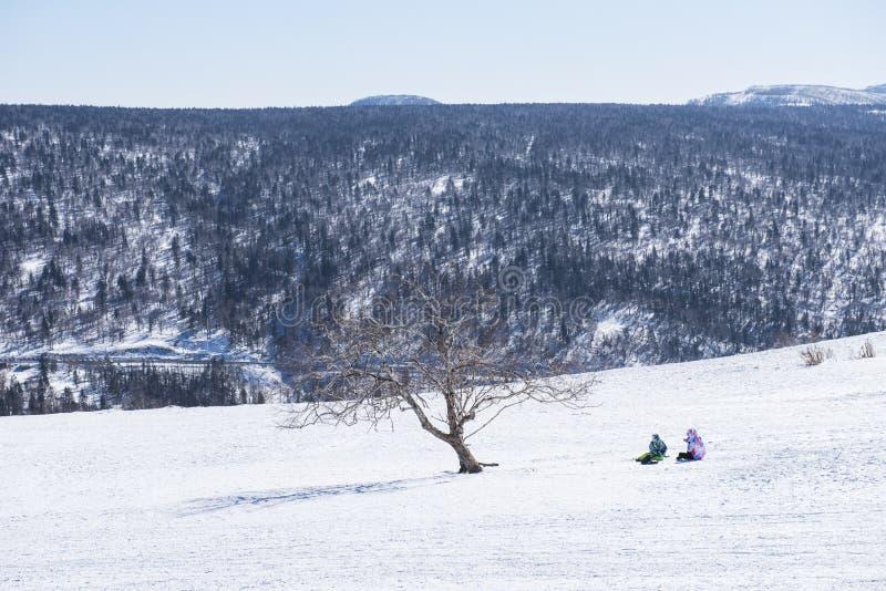 Man- & kvinnaarm i arm i färgrik sett bakifrån gå för vinter kläder ner skogvägen i kaskadberg på härligt arkivfoton