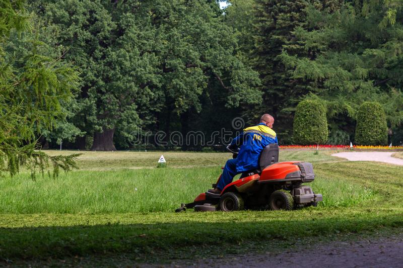 The man on the lawn mower is cutting the grass on the lawn royalty free stock photo
