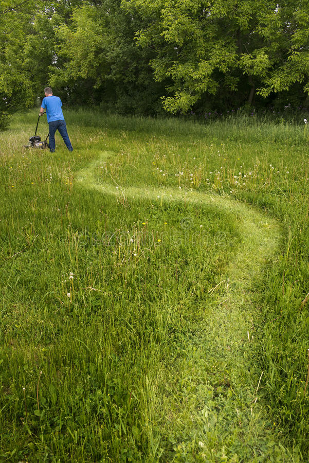 Man with Lawnmower Mowing Tall Grass and Big, Large Lawn stock image