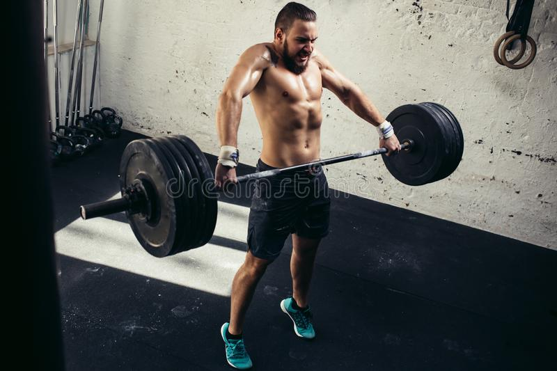 Man lifting weights. muscular man workout in gym doing exercises with barbell royalty free stock image