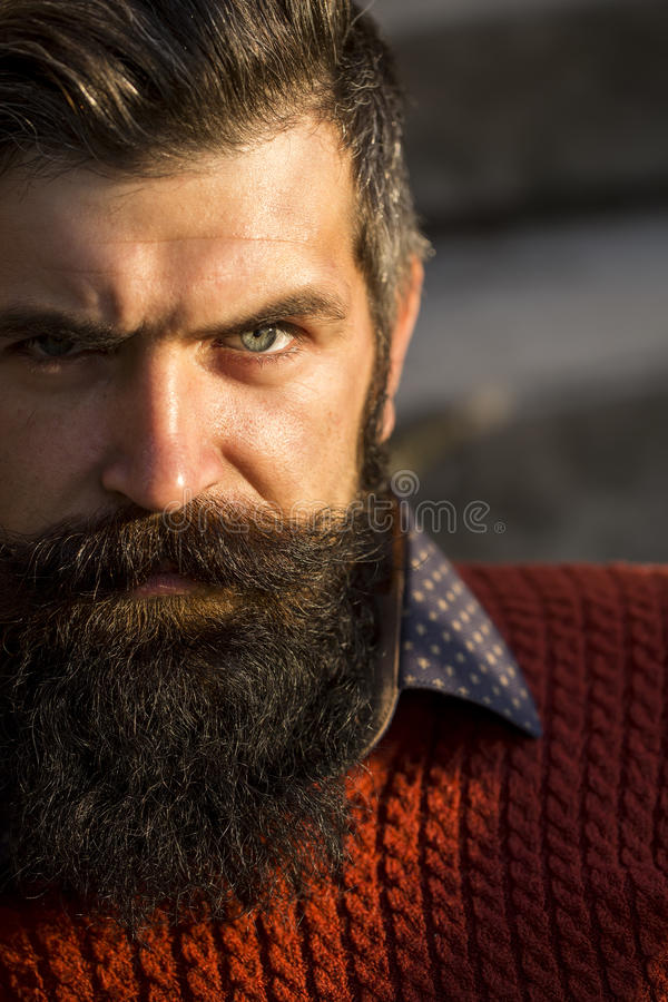 Man with long beard royalty free stock images