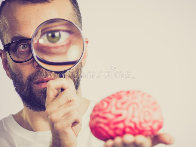 Man looking at human brain. Adult nerd man wearing eyeglasses looking at human brain model. Thinking and intelligence conept stock photos