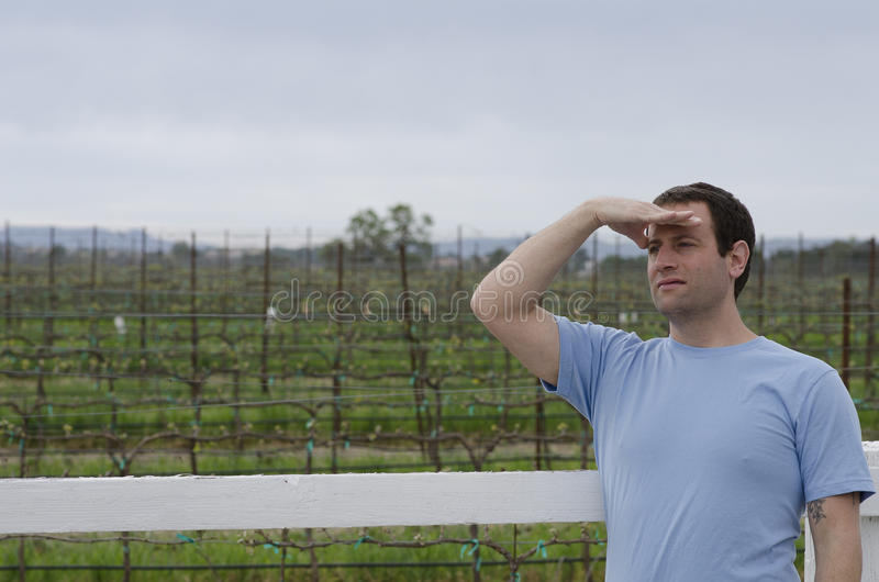 Man looking off into the distance in a vineyard. Man with hand on his forehead looking off into the distance with a vineyard behind him royalty free stock photography