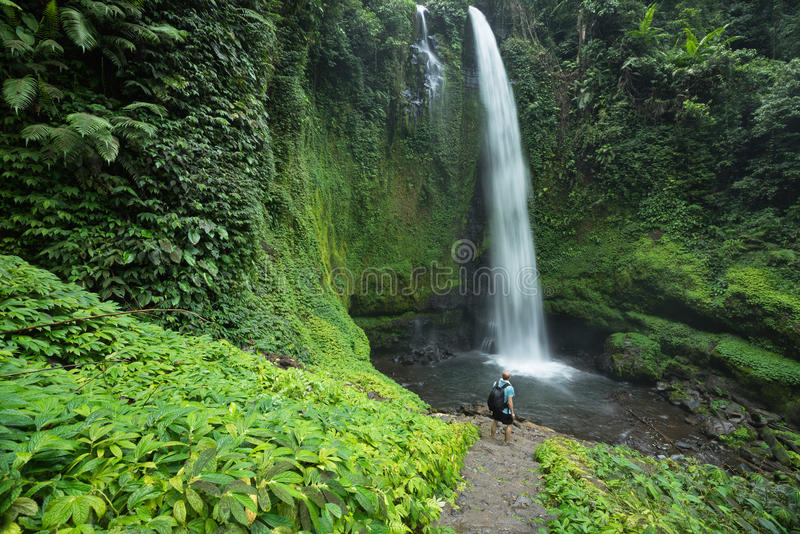 Man by lush green tropical Rain forest waterfall. Man standing by huge tropical waterfall surrounded by lush green Rain forest vegetation and Jungle in Lombok stock photos
