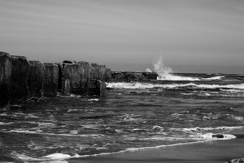 In the Moray Firth Scotland royalty free stock images