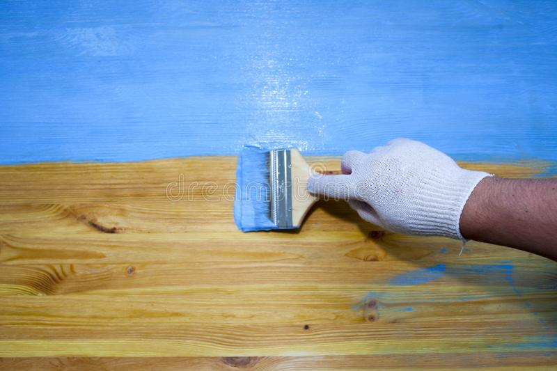 A man manually paints a wooden surface. Brush with blue paint royalty free stock photo