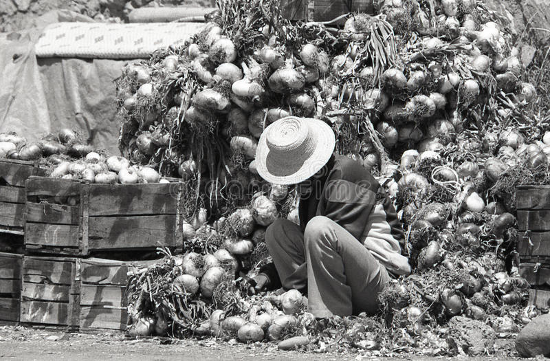 Man at market stock images