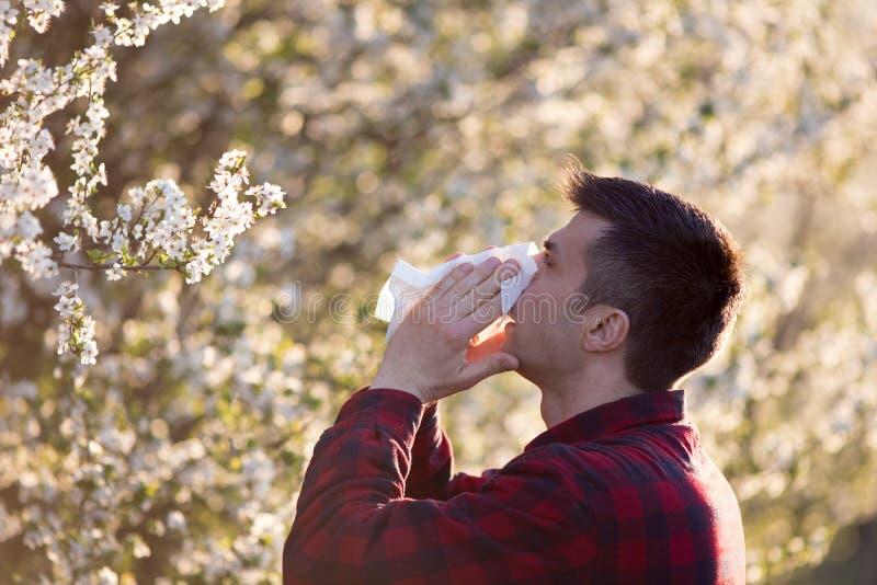 Man med allergi på pollen arkivbild