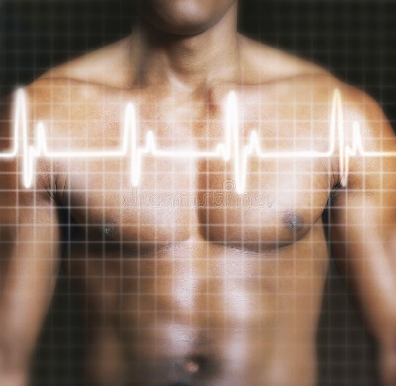 Man med elektrokardiogramgrafen som läggas över på bröstkorg royaltyfri fotografi