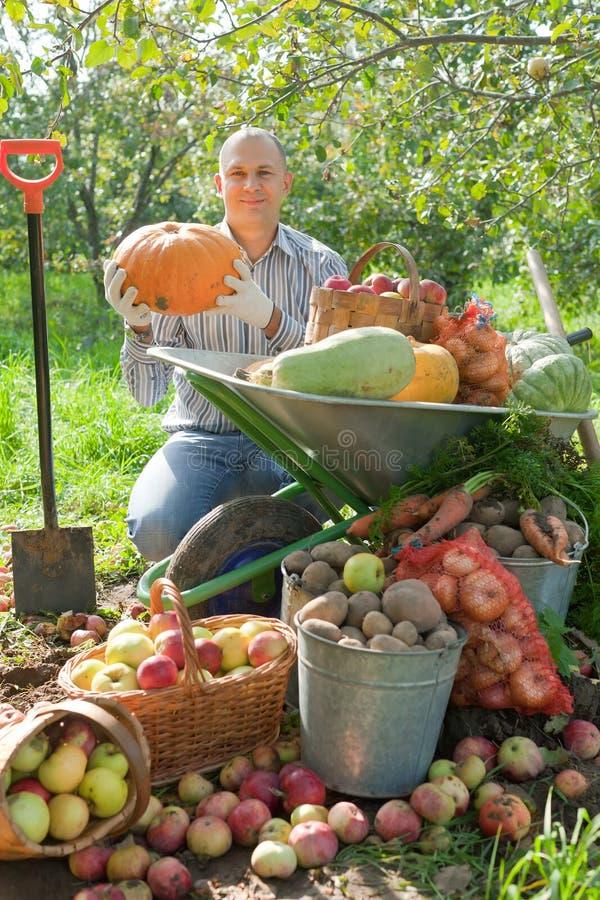 Man med grönsakskörden i trädgård arkivbild