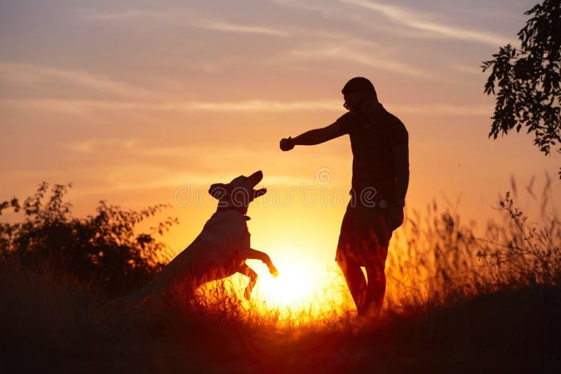 Man med hunden royaltyfria bilder