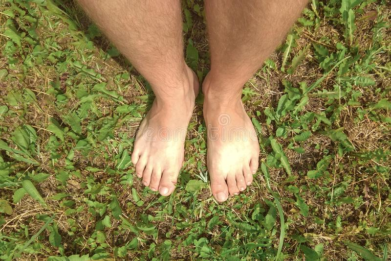 Man med kal fot som står på det gröna gräset i trädgården royaltyfria foton