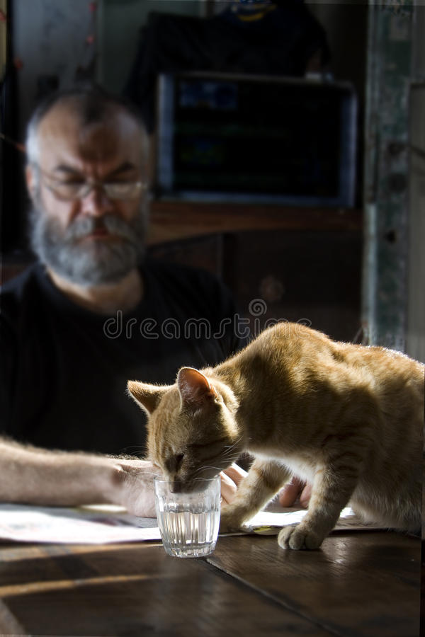 Man med skägget och hans katt royaltyfria foton