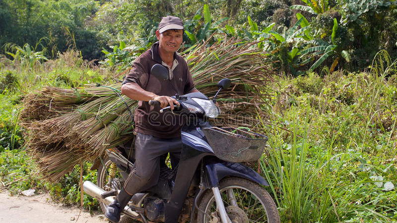 Man on motorbike with sheaf of grass. Old man on motorbike with sheaf of grass royalty free stock photo