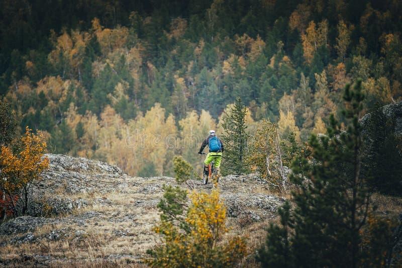 Man on a mountain bike royalty free stock photo