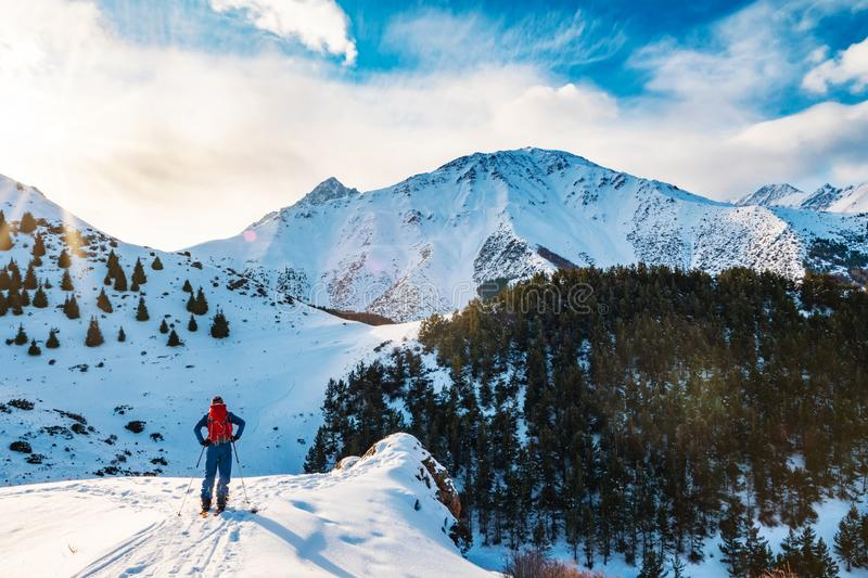A man in the mountains. Ski touring on a split snowboard. A man stands with his back to the viewer and looks at the mountain stock photography