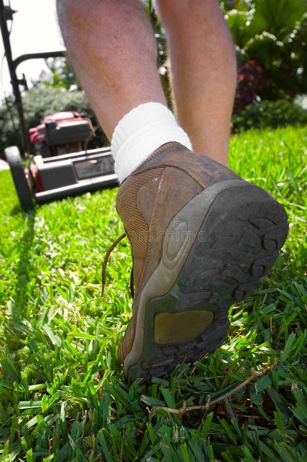 Free Man Mowing Lawn Stock Photos - 4460983