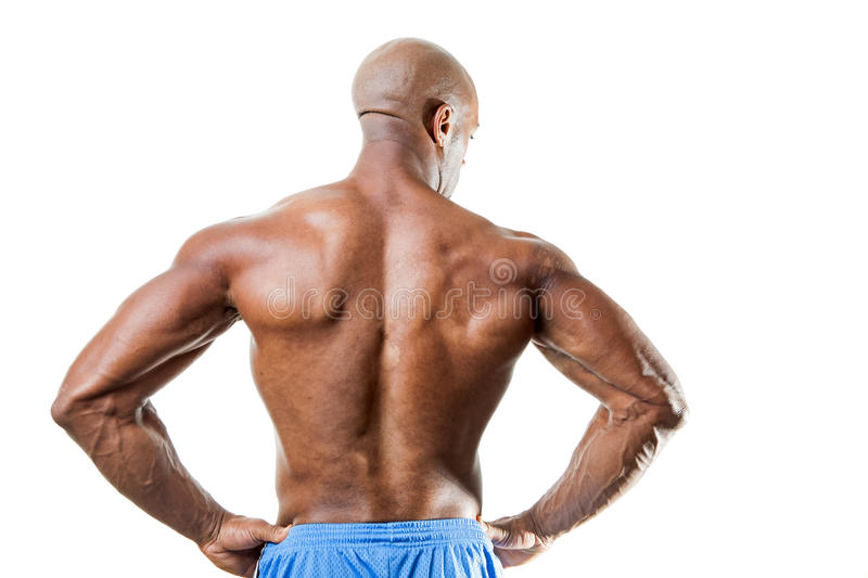 Man With Muscular Back Stock Photo Image Of Arms Body 57678882