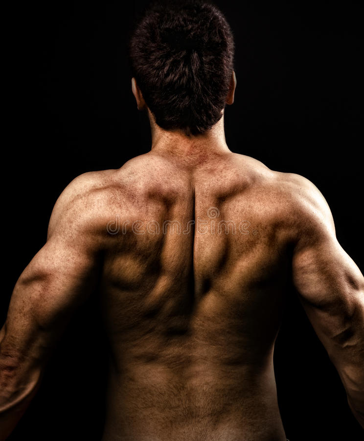 Man with muscular strong back stock photography