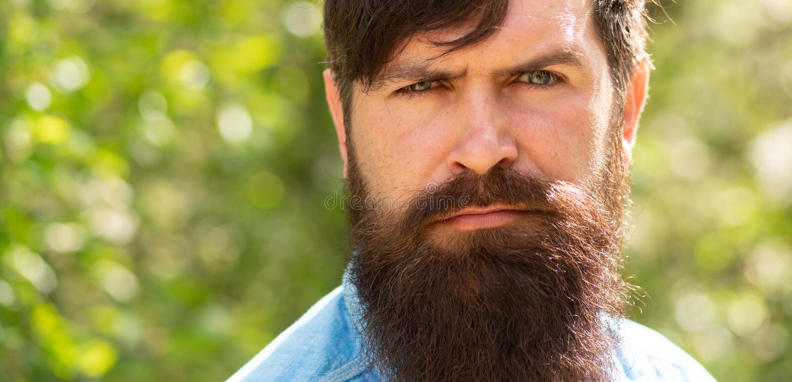 Man on nature background. Bearded guy. Young male hipster. Attractive man with green eyes. Male portrait. Handsome guy royalty free stock photo